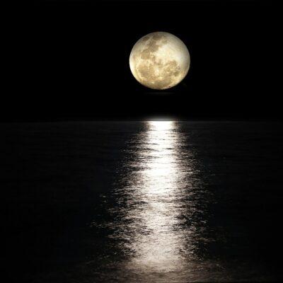 Puntata 98 – Bunker Night – La notte, gli amori ed i viaggi